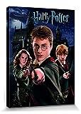 Harry Potter 1art1 Harry Ron Hermine Bilder Leinwand-Bild