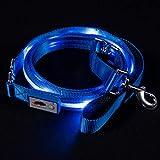Blazin' Safety LED Dog Leash - USB Rechargeable Flashing Light, 6 Ft, Water Resistant – Avoid Danger – Blue