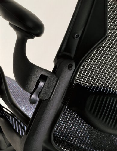Herman Miller Embody Ergonomic Office Chair | Fully Adjustable Arms and Carpet...