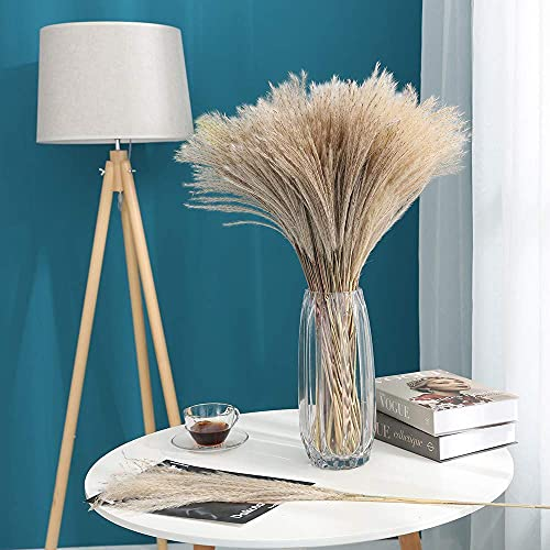 Dried Pampas Grass Plumes 100pcs 17 Inch Tall Natural Dried Flowers Arrangements Artificial Faux Reed Flower Stems Bunch for Wedding Vase Door Wreath Decor Brown (100 Pcs)