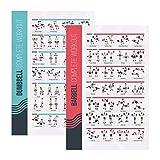FitMate - Póster de ejercicio con pesas y mancuernas - Rutina de entrenamiento con pesas libres, decoración del gimnasio en casa, guía de habitación (50 x 76 cm)