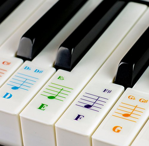 Color Piano Stickers for 88/76/61/54/49/37 Key Keyboards – Transparent and Removable: Made in USA