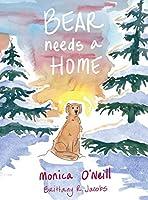 Bear Needs A Home