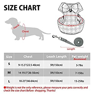 RYPET Small Dog Harness and Leash Set - No Pull Pet Harness with Soft Mesh Nylon Vest for Small Dogs and Cats Gray S