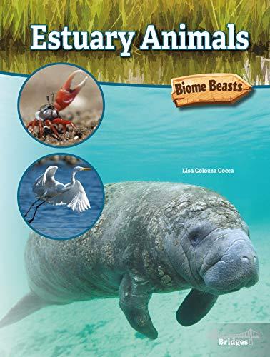 Estuary Animals (Biome Beasts)