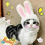 BWOGUE Cute Costume Bunny Rabbit Hat with Ears for Cats & Small Dogs Party Costume Halloween Accessory Headwear