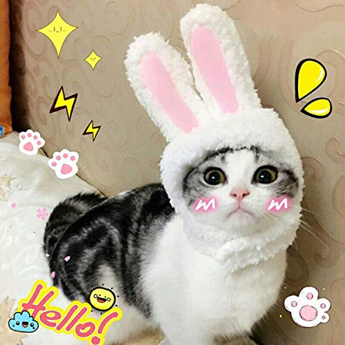 BWOGUE Cute Costume Bunny Rabbit Hat with Ears for Cats & Small Dogs Party Costume Halloween...