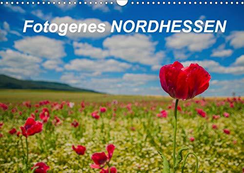 Fotogenes Nordhessen (Wandkalender 2021 DIN A3 quer)