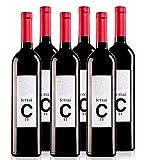Terrai C11 - Vino Tinto 100% Garnacha - 16 meses en Barrica de Roble Francés y Americano - Añada 2011 - Caja de 6 botellas