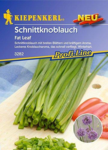 Kiepenkerl, Schnittknoblauch Fat Leaf