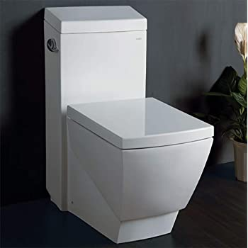 EAGO TB336 High Efficiency Eco-Friendly Toilet, 1-Piece