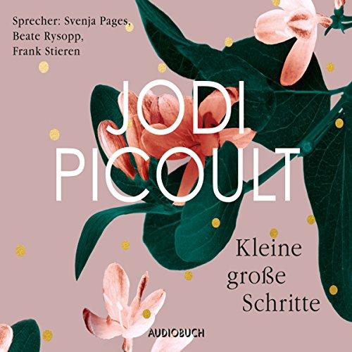 Kleine große Schritte audiobook cover art