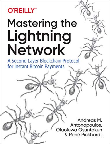 Mastering the Lightning Network: A Second Layer Blockchain Protocol for Instant Bitcoin Payments