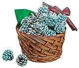 Fox Valley Traders Color Pinecones in Basket