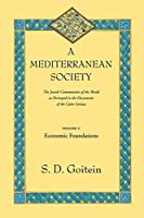 A Mediterranean Society: The Jewish Communities of the Arab World as Portrayed in the Documents of the Cairo Geniza, Vol. I: Economic Foundations (Near Eastern Center, UCLA) by S. D. Goitein(2000-06-07)