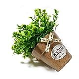 SANHOC Planta de Flor Artificial de la floración brotes Tela de Seda de la Flor del jardín de Granja decoración Falsa + Olla pequeña vasija de cerámica bonsái