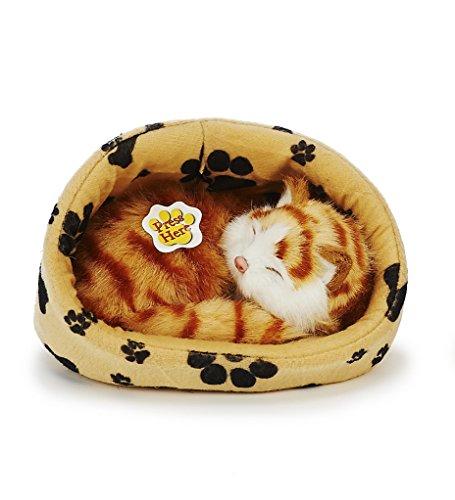 Teddys Rothenburg -   Katze im Körbchen,