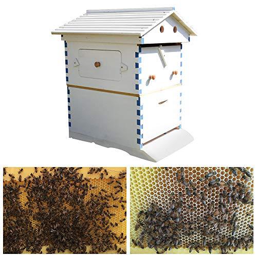 YINGY - Colmena de Abeja de Madera, casa de Abejas automática para la Colmena de Aves, Suministros de Apicultura, Caja de Nido de jardín para Apicultor