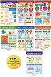 NewPath Learning - 93-3501 Math Bulletin Board Chart Set, Fractions, Set of 7