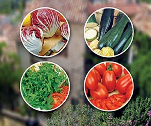 Lot de graines nourriture italienne à faire pousser