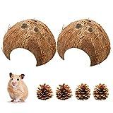 2 cuencos de coco semicáscara de coco como cueva de incubación y escondite para hámsters, cangrejo y otros animales pequeños, decoración para pequeños animales, acuario y terrarios (diámetro 10-14 cm)