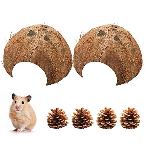 2 Stück Kokosnuss Halbschale, Kokosnuss-Schale als Brut- und Versteck-Höhle für Hamster Rennmäuse Einsiedlerkrebs und andere Kleintiere, Dekor für Kleintierhaus Aquarium und Terrarien (ø 10-14 cm)