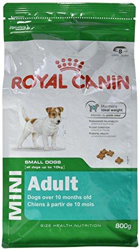 ROYAL CANIN Mini Adult Secco Cane Gr. 800 - Mangimi Secchi per Cani Crocchette