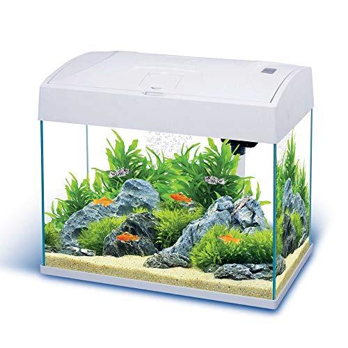 Nano-Komplett-Aquarium 20 L, kratzfestes Glas, inkl. Filter, Pumpe, LED-Beleuchtung