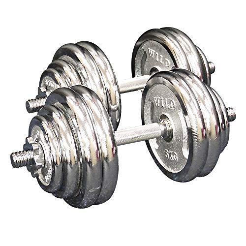 [ WILD FIT ワイルドフィット ] 60kgセット (片手30kg × 2組) 【 シルバー 】 ダンベル・アレー [ 1605 ]