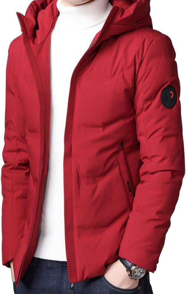 Down jacket Winter Hooded, Middle-Aged Men's Short Paragraph Thicken Casual Warm Coat, Padding: 90% White Duck Down (Size: M, L, XL, 2XL, 3XL, 4XL)