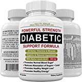 Best Blood Sugar Supports - Diabetic Support Formula - 28 Vitamins Minerals Herbs Review