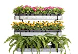 Benarr Metallic Vertical Wall Planter | an Ideal Galvanized Wall Mounted Planter for Outdoor and Indoor Plants, Flowers, Vegetables, Herbs and Succulents