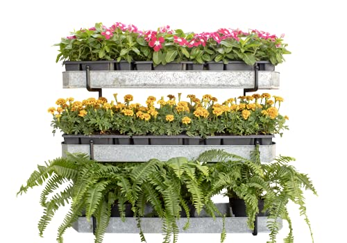 Benarr Vertical Garden Rack, Plants Wall, 3 Tier Galvanized Trays, Plant Stand Outdoor, Wall Planter, Flowers Stand, Pots, Herbs Planter, Metal Plant Stand. Patio Garden, Fence