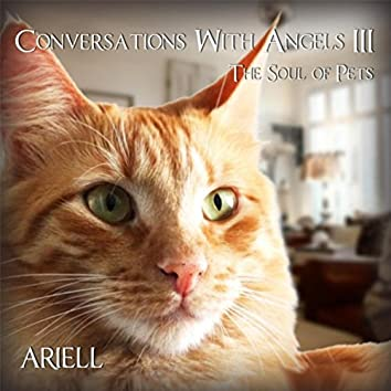 Conversations with Angels III: The Soul of Pets