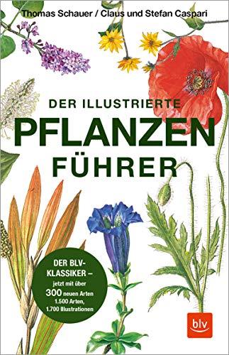 Der illustrierte Pflanzenführer: Der BLV-Klassiker – jetzt mit über 300 neuen Arten (Natur)