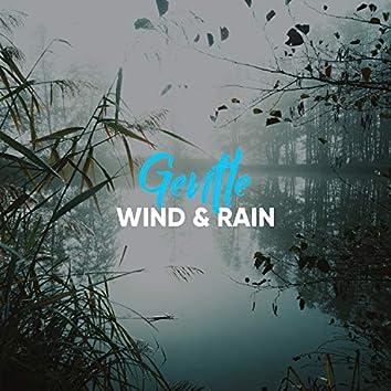 Gentle Wind & Rain, Vol. 4