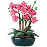 Tnfeeon 1:12 Miniatur Puppenhaus Blume Magnolie Rose Rote Pflanze Mit Keramik Blume Balkon...