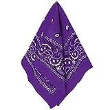 Amscan 255561.14 Paisley Purple Bandana, 1ct