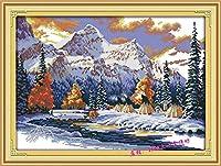 刺繡スターターキット刻印クロスステッチキット初心者簡単で面白いプレプリントパターンを備えたDIY11CT刺繡のための有名な数の風光明媚な雪山16x20インチ