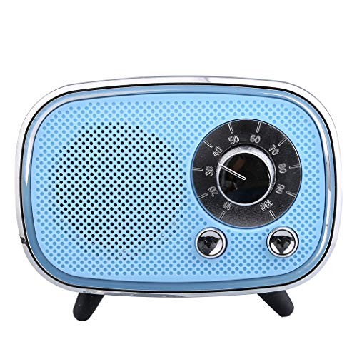 Best Bargain Bluetooth Speaker with Fm Radio,Portable Mini Wireless Speaker Player USB Radio Fm Blue...