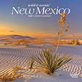 New Mexico Wild & Scenic 2020 7 x 7 Inch Monthly Mini Wall Calendar, USA United States of America Southwest State Nature (English, Spanish and French Edition)