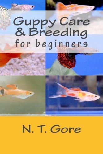 Guppy Care & Breeding for Beginners