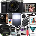 Sony a7C Mirrorless Full Frame Camera Alpha 7C Body with 28-60mm F4-5.6 Lens Kit Silver ILCE7CL/S Bundle with Deco Gear Case + Extra Battery + Flash + Filters + Macro & Telephoto Lenses + Accessories from Sony