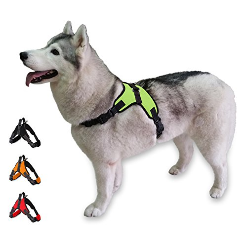 Cosy Meadow Escape Proof Dog Harness