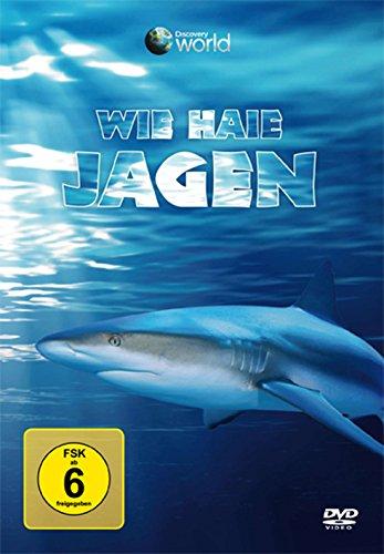 Wie Haie jagen