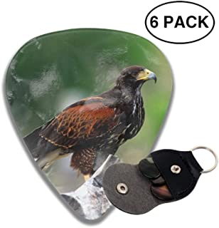 Guitar Picks Animal Hawk Birds Of Prey Celluloid Plectrum Thin Medium Heavy Bass 3D Printed Variety Pick Mini Music Gift Grip -6pcs