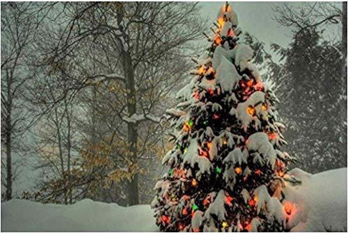 No brand DIY handgeschilderd olieverfschilderij kerstboom beginners met penseel schilderen op getallen volwassenen canvas olieverfschilderij geschenk - 40 x 50 cm