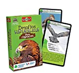 Bioviva- Desafíos Naturaleza Aves Rapaces (BINC0027)