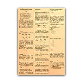 Bitcoin  A Peer-to-Peer Electronic Cash System Satoshi Nakamoto White Paper Detailed Kraft Poster