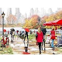 油絵 数字キットによる絵画 塗り絵 大人 手塗り Diy絵 デジタル油絵雨の中の美しい景色-Diyフレーム 40* 50 Cm